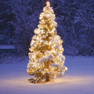 Kültéri toldható fényfüzér, Meleg fehér, 50 LED, 5 méter