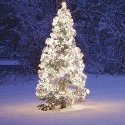 Kültéri toldható fényfüzér, Hideg fehér, 100 LED, 10 méter