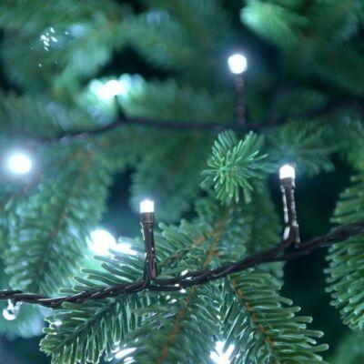 Vezérlős LED fényfüzér - hideg fehér 4 m, 80 LED