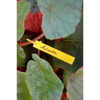 TREE LABEL Függő címkék (40 db/csomag)