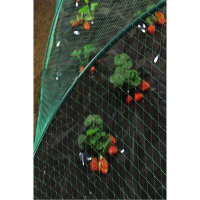BIRDNET madárkár elleni háló (madárháló) 2x10m, zöld